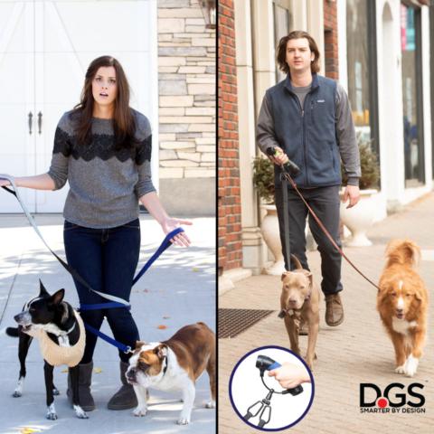 Walk two dogs tangle free